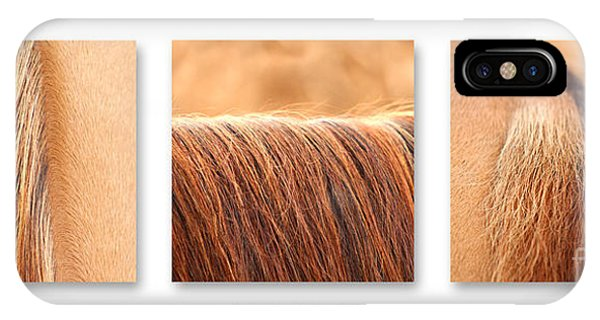 Salon D'equus Light IPhone Case