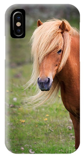 Salon Perfect Pony IPhone Case