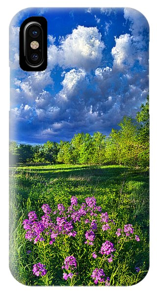 Fall Flowers iPhone Case - Same Old Light Is Shining by Phil Koch