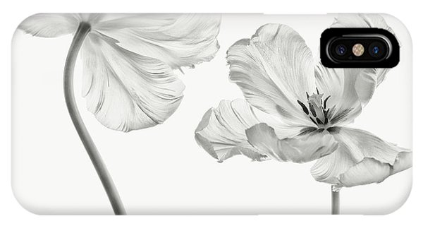 Tulip iPhone Case - Same Tulip : Front- And Backview by Lotte Gr?nkj?r