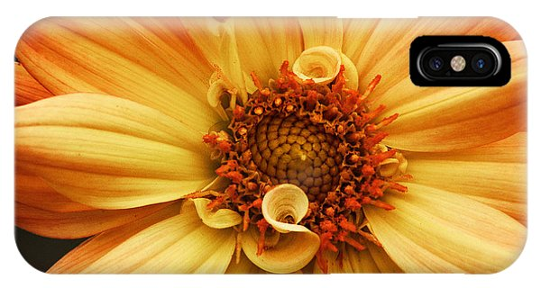 San Francisco Flower IPhone Case