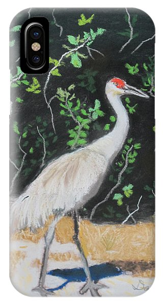 Sand Hill Crane Walking The Sands Of Seminole Forest IPhone Case