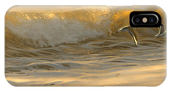 Sanderlings IPhone Case