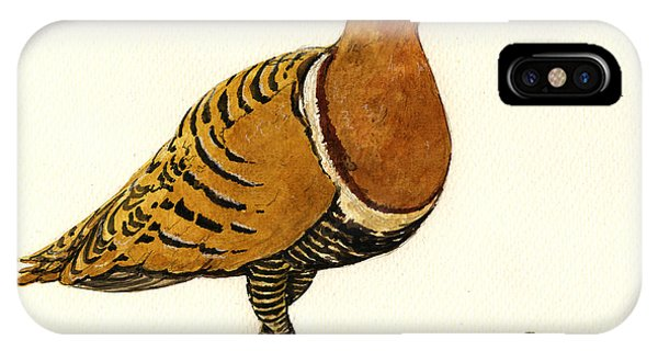 Sandgrouse Phone Case by Juan  Bosco