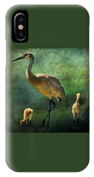Sandhill And Chicks IPhone Case