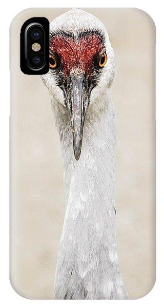 Sandhill Crane Phone Case by Marie  Cardona