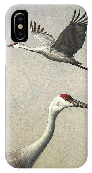 Sandhill Cranes IPhone Case