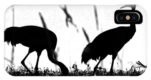 Sandhill Cranes In Silhouette IPhone Case