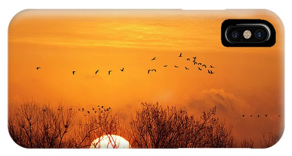 Nebraska iPhone Case - Sandhill Cranes Silhouetted Aginst by Chuck Haney