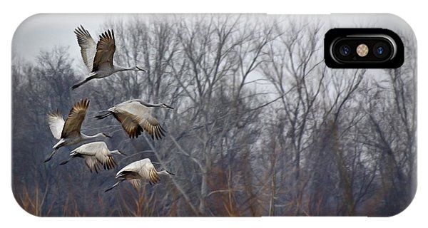 Sandhill Cranes Takeoff IPhone Case
