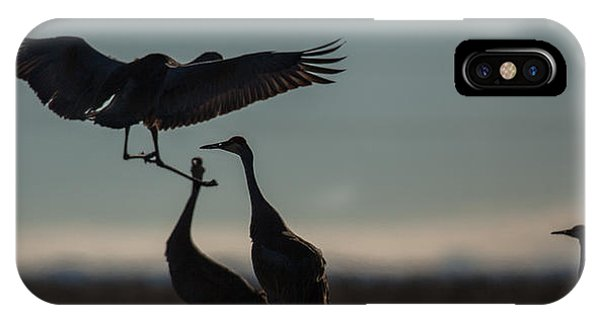 Sandhill Landing IPhone Case