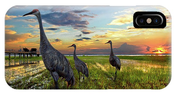 Sandhill Sunset IPhone Case