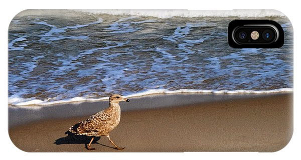 Sandpiper At Ortley Beach, Nj IPhone Case