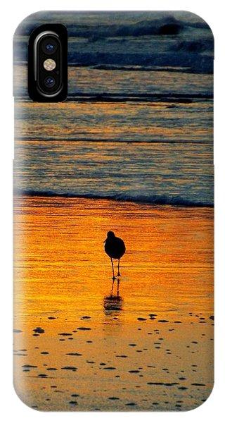 Sandpiper In Golden Dawn Surf IPhone Case