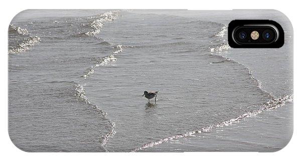 Sandpiper In Water IPhone Case
