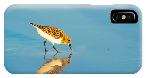 Sandpiper Mirror IPhone Case