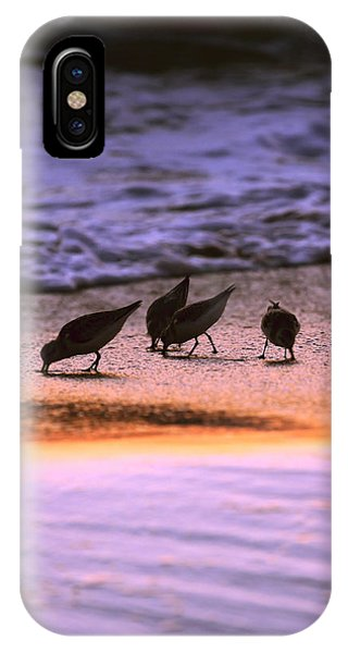 Sandpiper Morning IPhone Case