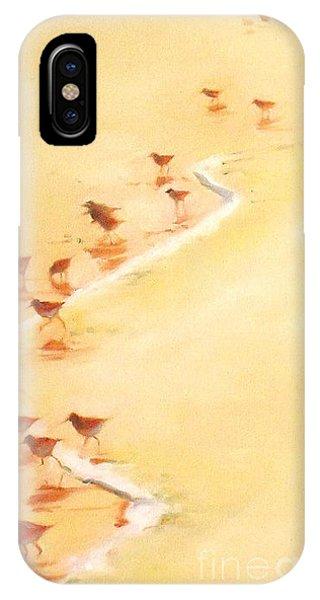 Sandpiper Promenade IPhone Case