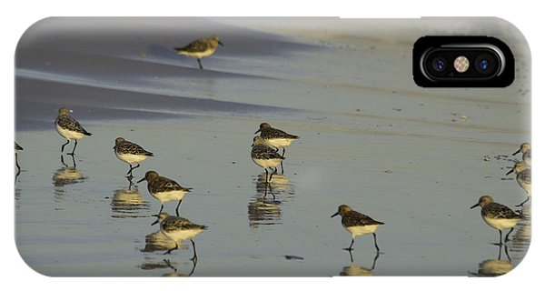 Sandpiper Sunset Reflection IPhone Case
