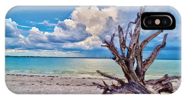 Sanibel Island Driftwood IPhone Case