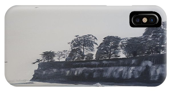 Santa Barbara Shoreline Park IPhone Case