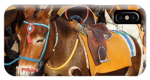Santorini Donkeys Ready For Work IPhone Case