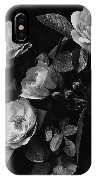 Sarah Van Fleet Variety Of Roses IPhone Case