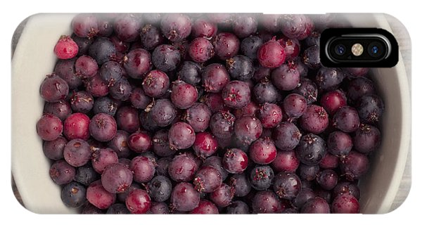 Blue Berry iPhone Case - Saskatoon Berries by Priska Wettstein