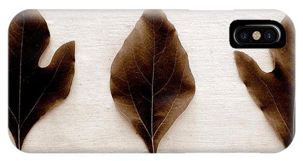 Sassafras Leaves In Sepia IPhone Case