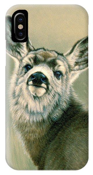 Mule Deer iPhone Case - Sassy Look by Paul Krapf