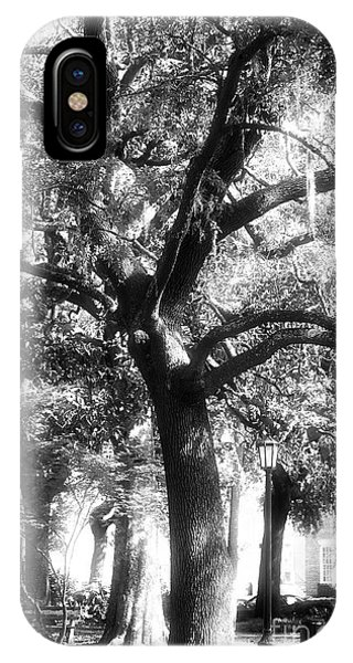 Savannah Oak IPhone Case