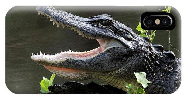Say Aah - American Alligator IPhone Case