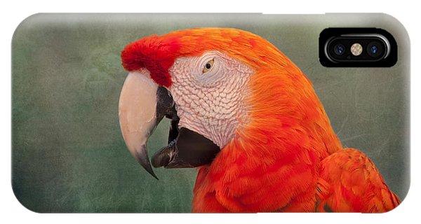 Macaw iPhone Case - Scarlet Macaw by Kim Hojnacki