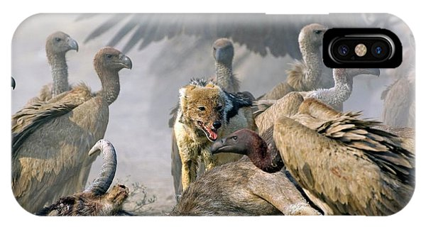 Cunning iPhone X Case - Scavengers On A Carcass by Tony Camacho/science Photo Library