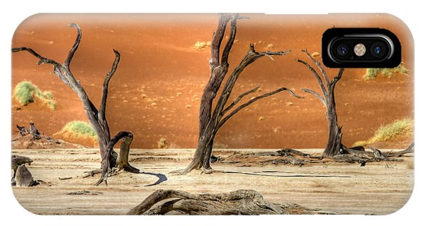 Scenic View At Sossusvlei IPhone Case