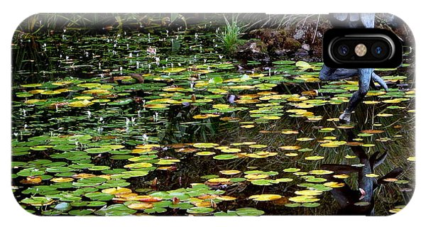 Schramsberg Winery Pond IPhone Case