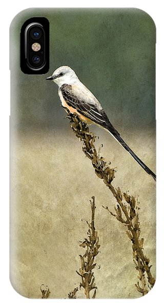 Flycatcher iPhone Case - Scissortailed-flycatcher by Betty LaRue