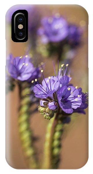 Scorpion Weed IPhone Case