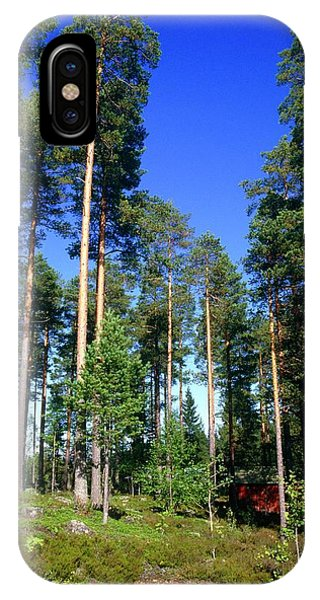 Scots Pine Forest Phone Case by Andrew Brown/science Photo Library