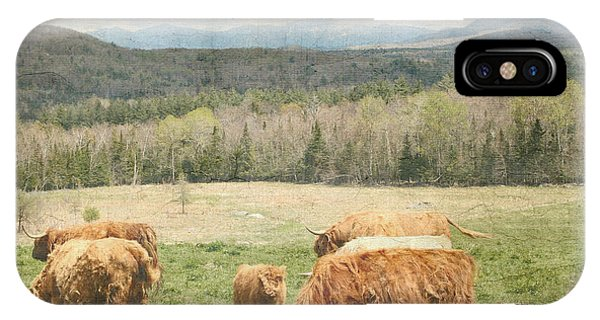 Scottish Highland Grazing  IPhone Case