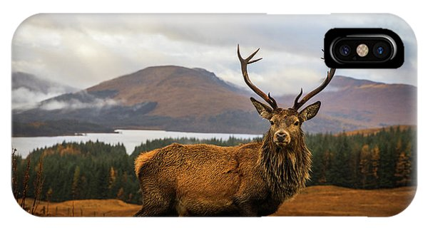 Stag iPhone Case - Scottish Stag by Adrian Popan