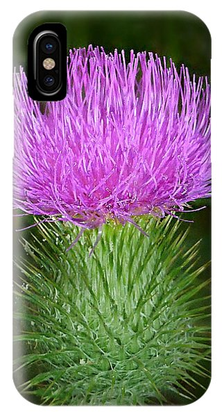 Scottish Thistle  IPhone Case