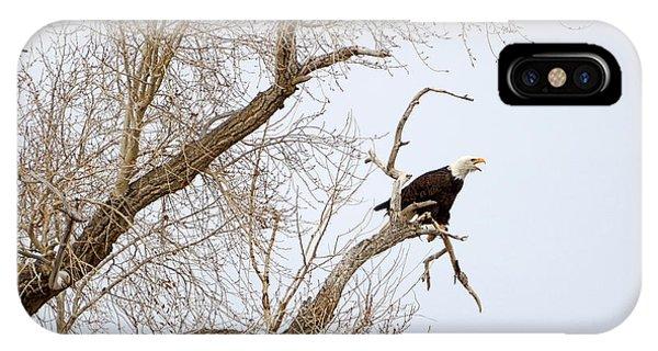 Screamin' Eagle IPhone Case