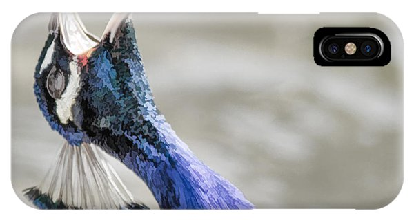 Screaming Peacock IPhone Case
