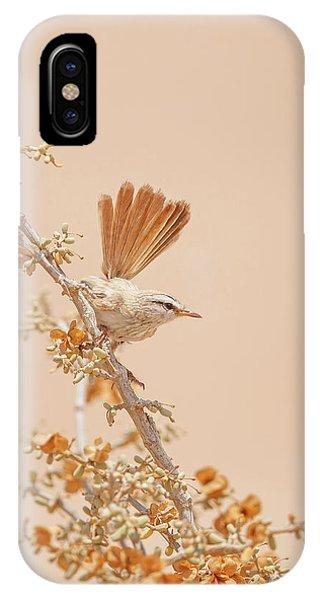 Twig iPhone Case - Scrub Warbler by Shlomo Waldmann