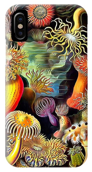 IPhone Case featuring the painting Sea Anemones by Ernst Haeckel