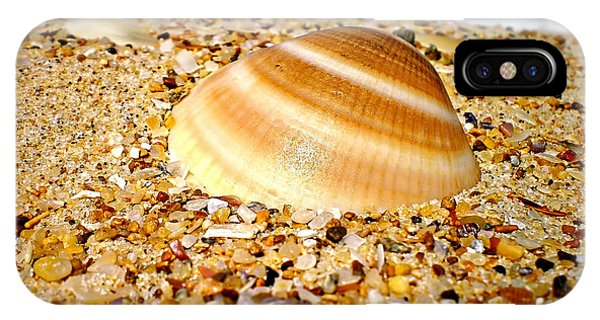Sea Beyond The Shell IPhone Case