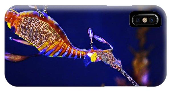 Sea Dragon IPhone Case