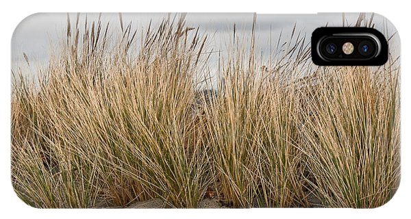 Sea Grass And Sand IPhone Case