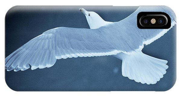 Sea Gull Over Icy Water IPhone Case